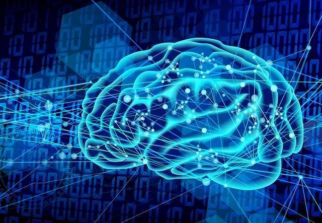 脳システム